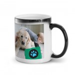 Personalized 11oz Magic Mug
