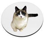 Personalized Hardboard Fridge Magnet - Round